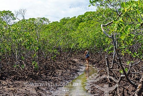 Mangue entre a Praia de Bainema e a Ponta dos Castelhanos  - Cairu - Bahia (BA) - Brasil