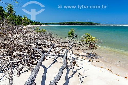 Vista da orla da Ponta dos Castelhanos  - Cairu - Bahia (BA) - Brasil