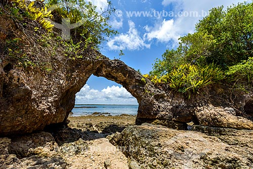 Vista da ilha da Pedra Furada  - Camamu - Bahia (BA) - Brasil
