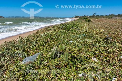Lixo na orla da Praia Rasa  - Armação dos Búzios - Rio de Janeiro (RJ) - Brasil