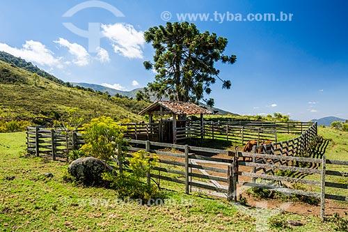 Curral de cavalos próximo ao Parque Estadual dos Três Picos  - Teresópolis - Rio de Janeiro (RJ) - Brasil