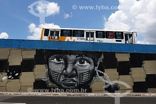 Grafite de Raiz Campos com temas amazônicos no Complexo Viário Gilberto Mestrinho  - Manaus - Amazonas (AM) - Brasil