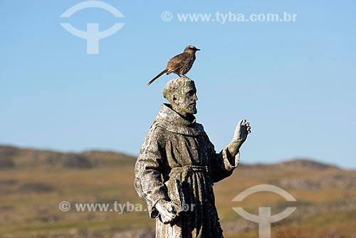 Ave em cima da Estátua de São Francisco de Assis próximo da nascente do Rio São Francisco no Parque Nacional da Serra da Canastra  - São Roque de Minas - Minas Gerais (MG) - Brasil