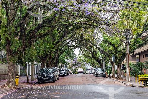 Vista da Rua Padre Chagas  - Porto Alegre - Rio Grande do Sul (RS) - Brasil