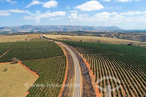 Foto feita com drone de plantação de café sobre a Rodovia MG-341  - São Roque de Minas - Minas Gerais (MG) - Brasil
