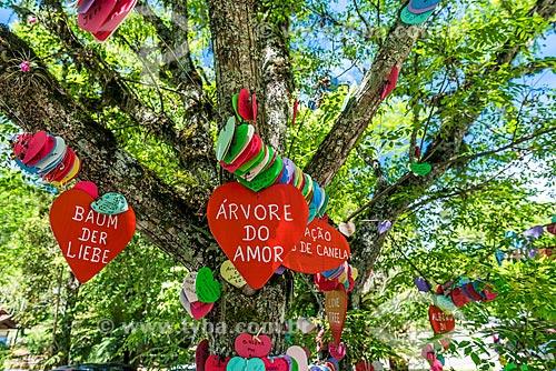 Detalhe da Árvore do amor - com corações coloridos pendurados onde os visitantes deixam pedidos -  no Parque Estadual do Caracol  - Canela - Rio Grande do Sul (RS) - Brasil
