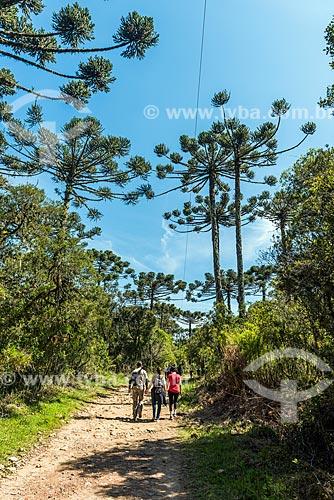 Vista da trilha do cotovelo durante a caminhada para o Cânion do Itaimbezinho no Parque Nacional dos Aparados da Serra  - Cambará do Sul - Rio Grande do Sul (RS) - Brasil