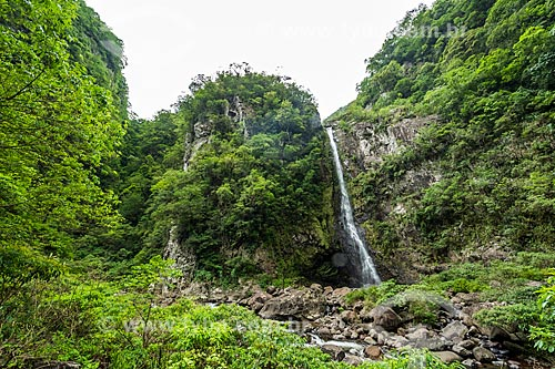 Vista do Cachoeira do Braço Forte no Parque Nacional dos Aparados da Serra  - Cambará do Sul - Rio Grande do Sul (RS) - Brasil