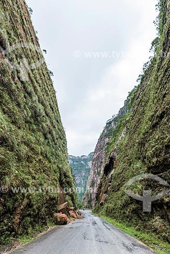 Vista de deslizamento de terra em trecho da Rodovia SC-370 na Serra do Corvo Branco  - Urubici - Santa Catarina (SC) - Brasil