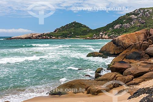 Vista da orla da Praia Mole  - Florianópolis - Santa Catarina (SC) - Brasil