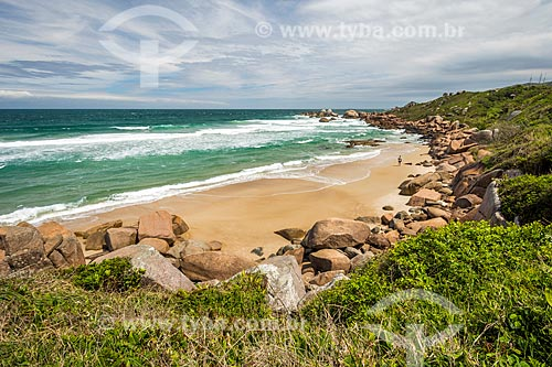 Vista da orla da Praia da Galheta  - Florianópolis - Santa Catarina (SC) - Brasil