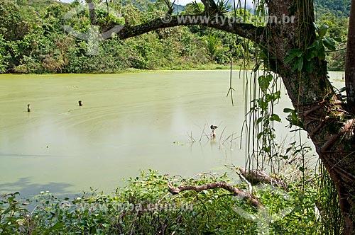 Vista de lago na Reserva Ecológica de Guapiaçu  - Cachoeiras de Macacu - Rio de Janeiro (RJ) - Brasil