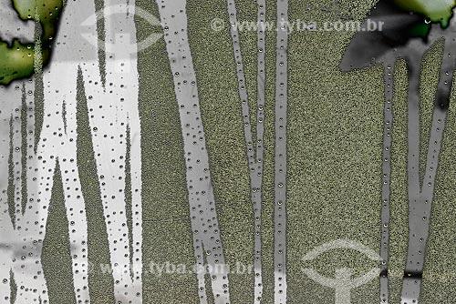 Efeito de condensação em vidro no Vale do Paraíba  - Campos do Jordão - São Paulo (SP) - Brasil