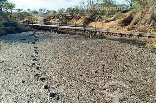 Foto feita com drone de pegadas no Monumento natural do Vale dos Dinossauros  - Sousa - Paraíba (PB) - Brasil
