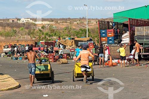 Burro-sem-rabo na Centrais de Abastecimento do Ceará S.A. - CEASA do Cariri  - Barbalha - Ceará (CE) - Brasil