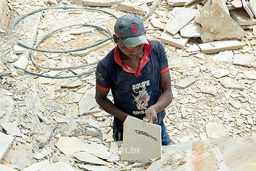 Fóssil de peixe encontrado durante a extração de calcário no corte de Pedra Cariri  - Santana do Cariri - Ceará (CE) - Brasil
