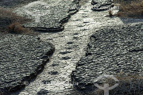Detalhe de pegadas fossilizadas no Rio do Peixe na área do Monumento natural do Vale dos Dinossauros  - Sousa - Paraíba (PB) - Brasil