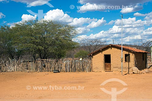 Casa de pau-a-pique na aldeia Travessão do Ouro da Tribo Pipipãs  - Floresta - Pernambuco (PE) - Brasil
