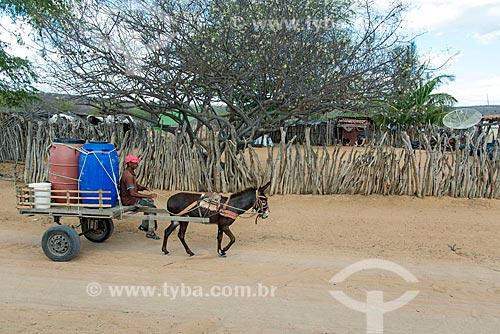Índio da aldeia Travessão do Ouro da Tribo Pipipãs transportando água em carroça  - Floresta - Pernambuco (PE) - Brasil