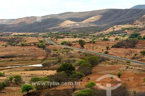 Vista de trecho da Rodovia PB-306  - Manaíra - Paraíba (PB) - Brasil