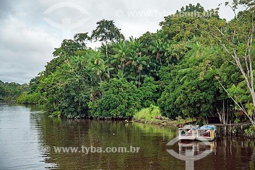 Vista da margem do Rio Preto  - Mazagão - Amapá (AP) - Brasil