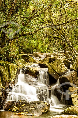 Cachoeira da Gurita no Parque Municipal da Lagoa do Peri  - Florianópolis - Santa Catarina (SC) - Brasil