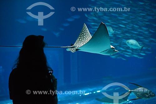 Silhueta de pessoa observando arraia no AquaRio - aquário marinho da cidade do Rio de Janeiro  - Rio de Janeiro - Rio de Janeiro (RJ) - Brasil