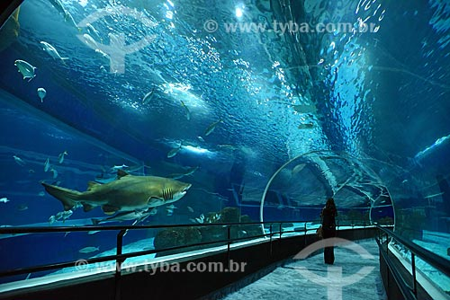 Pessoas no interior do AquaRio - aquário marinho da cidade do Rio de Janeiro  - Rio de Janeiro - Rio de Janeiro (RJ) - Brasil