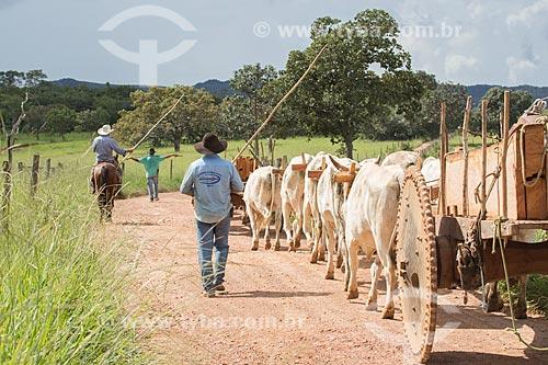 Detalhe de carro de boi transportando madeira  - Mossâmedes - Goiás (GO) - Brasil