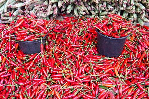 Detalhe de pimenta-malagueta à venda em feira livre  - Goiânia - Goiás (GO) - Brasil