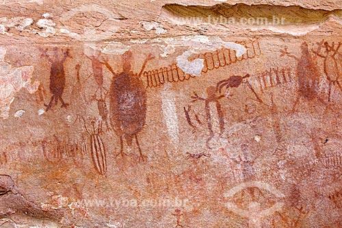 Detalhe de pintura rupestre - figuras de animais - no Sítio Arqueológico Toca do João Arsena no Parque Nacional Serra da Capivara  - São Raimundo Nonato - Piauí (PI) - Brasil