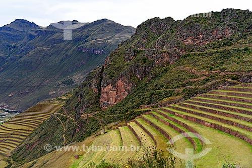 Ruínas de terraço no Parque Arqueológico de Písac  - Písac - Departamento de Cusco - Peru