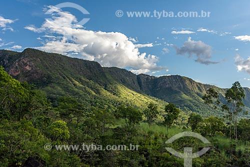 Vegetação típica do cerrado no Vale da lua  - Alto Paraíso de Goiás - Goiás (GO) - Brasil