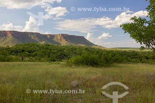 Vista da Serra das Mangabeiras no Parque Nacional das Nascentes do Rio Parnaíba  - Barreiras do Piauí - Piauí (PI) - Brasil