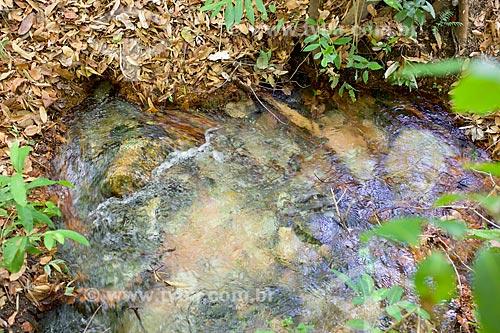 Detalhe da principal nascente do Rio Parnaíba no Parque Nacional das Nascentes do Rio Parnaíba  - Barreiras do Piauí - Piauí (PI) - Brasil