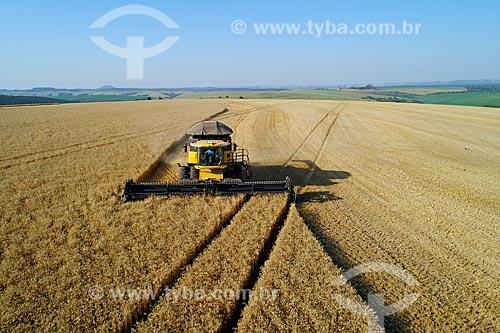Foto aérea de colheita mecanizada de trigo  - Arapoti - Paraná (PR) - Brasil