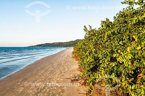 Vista da orla da Praia da Daniela  - Florianópolis - Santa Catarina (SC) - Brasil