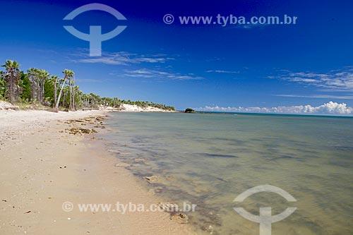 Vista da orla da Praia de Barrinha  - Cajueiro da Praia - Piauí (PI) - Brasil