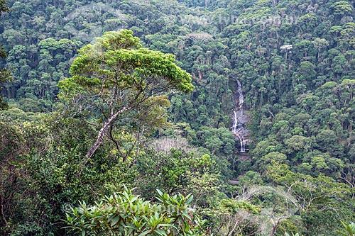Vista da Cascatinha Taunay a partir do Mirante da Cascatinha no Parque Nacional da Tijuca  - Rio de Janeiro - Rio de Janeiro (RJ) - Brasil