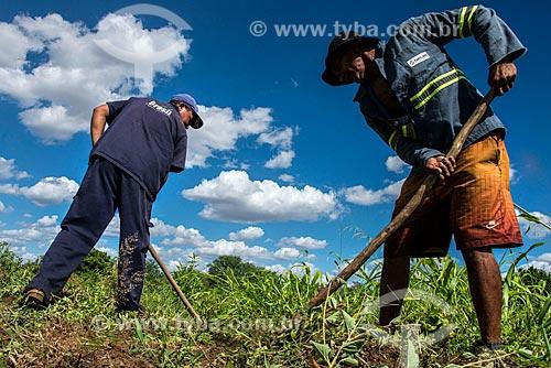 Trabalhadores rurais capinando área para fazer roça irrigada com água captada do Rio São Francisco  - Custódia - Pernambuco (PE) - Brasil