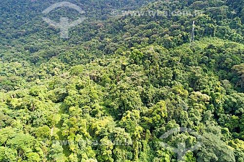 Foto feita com drone de vegetação típica de Mata Atlântica no Núcleo São Sebastião do Parque Estadual da Serra do Mar  - São Sebastião - São Paulo (SP) - Brasil