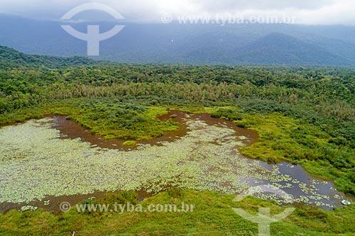 Foto feita com drone de área de Mata Atlântica alagada próximo à Bertioga  - Bertioga - São Paulo (SP) - Brasil
