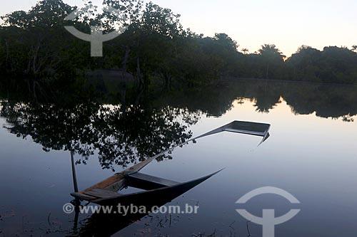 Canoa quase encoberta no Rio Negro - Parque Nacional de Anavilhanas  - Novo Airão - Amazonas (AM) - Brasil