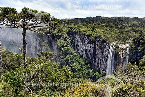 Vista da Cachoeira das Andorinhas no Cânion do Itaimbezinho - Parque Nacional dos Aparados da Serra durante a trilha do vértice  - Cambará do Sul - Rio Grande do Sul (RS) - Brasil