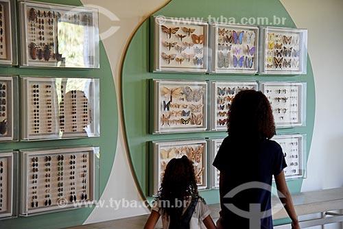 Insetos do Departamento de Entomologia em exibição no Museu Nacional - antigo Paço de São Cristóvão  - Rio de Janeiro - Rio de Janeiro (RJ) - Brasil