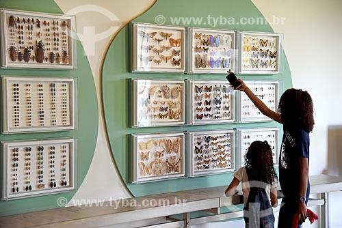 Mulher apontando para inseto do Departamento de Entomologia em exibição no Museu Nacional - antigo Paço de São Cristóvão  - Rio de Janeiro - Rio de Janeiro (RJ) - Brasil