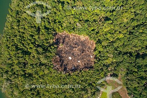 Foto aérea de queimada próximo ao Rio Tapajós - Floresta Nacional do Tapajós  - Santarém - Pará (PA) - Brasil