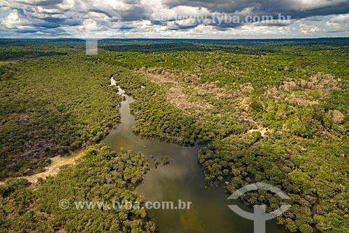 Foto aérea do Igarapé de Jamaraquá na Floresta Nacional do Tapajós  - Belterra - Pará (PA) - Brasil