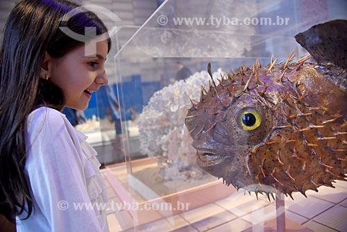 Menina observando peixe empalhado em exibição no Museu Nacional - antigo Paço de São Cristóvão  - Rio de Janeiro - Rio de Janeiro (RJ) - Brasil