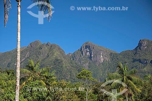 Vista da Serra da Mantiqueira a partir da Área de Proteção Ambiental da Serrinha do Alambari  - Resende - Rio de Janeiro (RJ) - Brasil